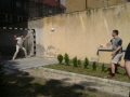 lpro facultate_2004 005
